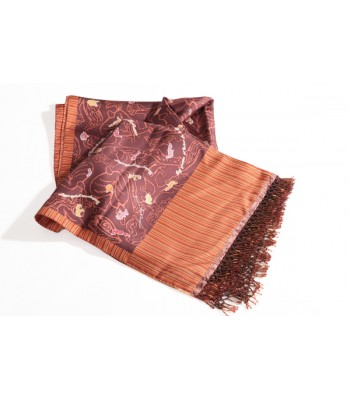 Milagritos Pineda Covalin Silk Shawl in Brown with Beads