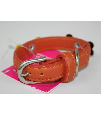"Bone Charms in Orange Leather Extra-Small Collar 1/2""x10"""