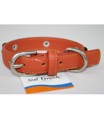 "Bone Charms in Orange Leather Small Collar 3/4""x14"""