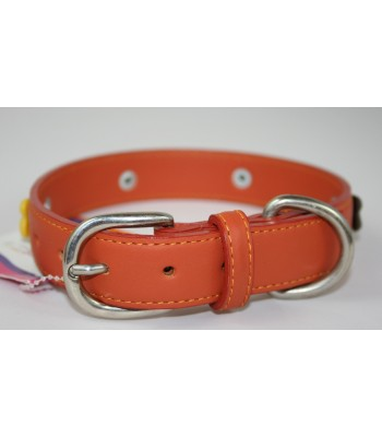 "Bone Charms in Orange Leather Medium Collar 1""x18"""