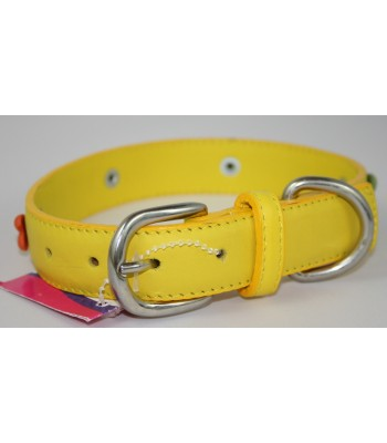 "Bone Charms in Yellow Leather Medium Collar 1""x18"""