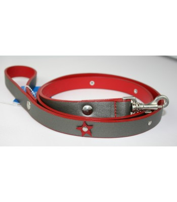 "Red Stars in Silver Leather Small Leash 3/4""x4'"