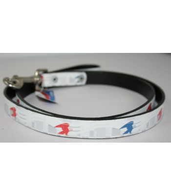 "USPS Eagles White Leather Large Leash 1""x4'"