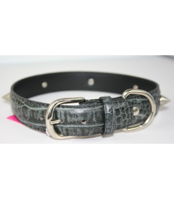 "Spikes in Croc Embossed Black Leather Large Collar 1 1/4""x22"""