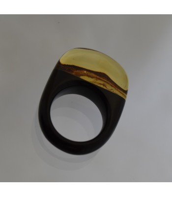 Amber and jet ring