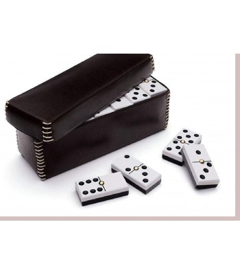 Domino Set in Leather Case