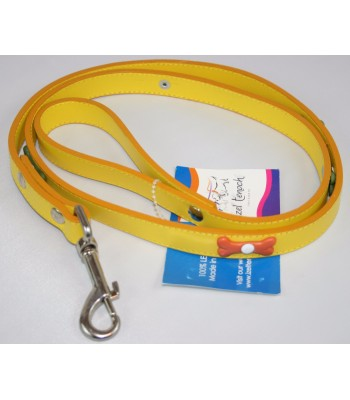"""Bone Charms in Yellow Leather Large Leash 1""""x4'"""