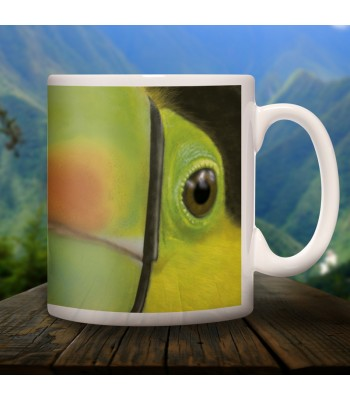 Toucan collector's mug in ceramic with designs of the common animals found in Chiapas.